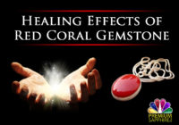 Healing Effects Of Red Coral Gemstone